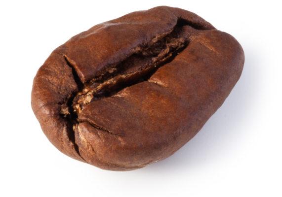 grano de café maqcaffé
